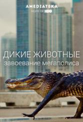 Дикие животные: Завоевание мегаполиса