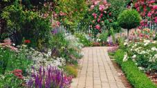 Все в сад