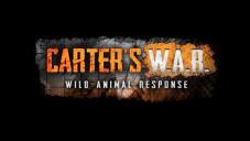 Война Картера