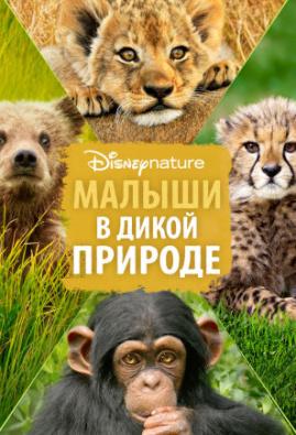 Малыши в дикой природе