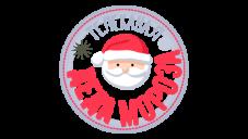 Телеканал Деда Мороза (тестовая трансляция канала)