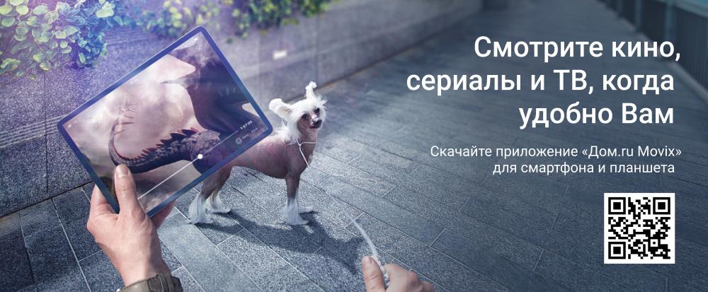 Мобильное приложение «Дом.ru Movix»